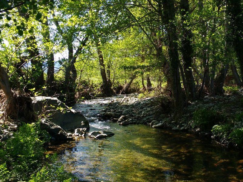 Photo de la rivière Aliso au droit du site de Rapale