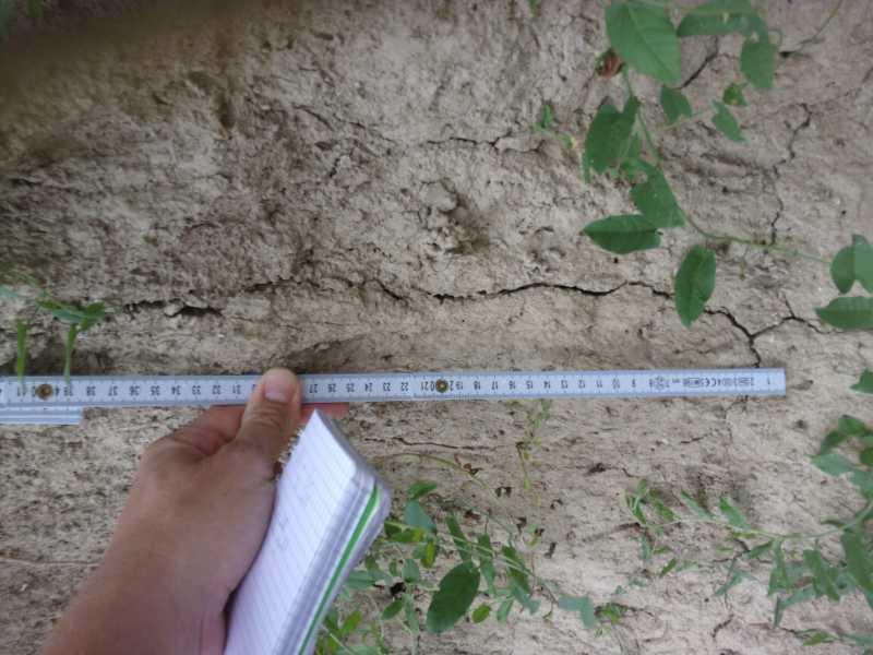 Hydrodynamique - Clément mesure un sédiment grâce à un mètre de charpentier