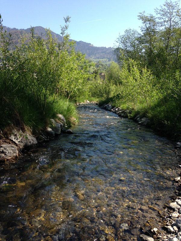 Visite post-travaux : la rivière de contournement sur la Chaise en Haute-Savoie