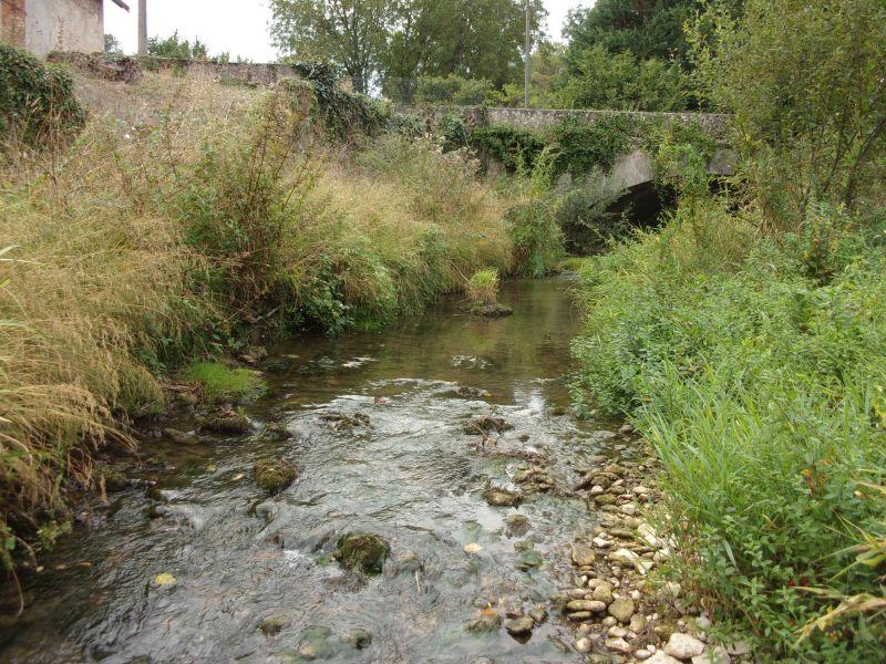 Ecomorphologie : un cours d'eau du bassin versant étudié