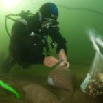Un plongeur de l'ADENA prélève des sédiments afin de réaliser une granulométrie