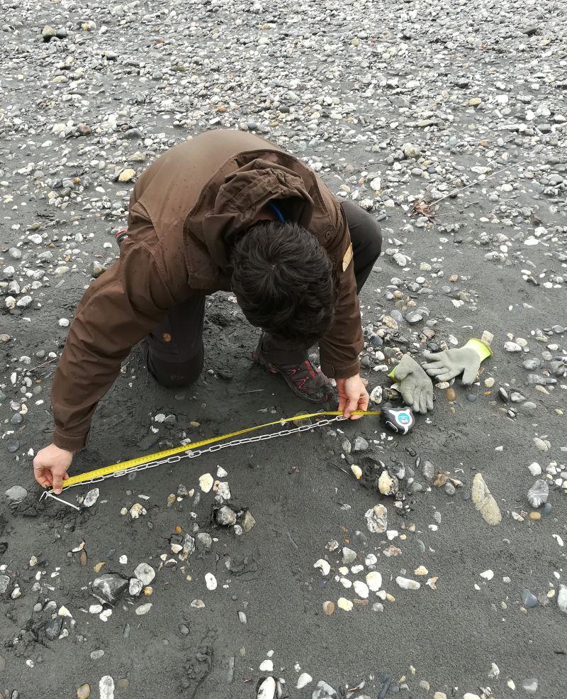 Benoît mesure d'une chaîne d'érosion pour le suivi scientifique et technique des bancs de l'Isère