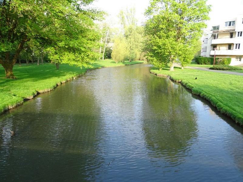 Reyssouze : la rivière qui traverse le parc des Baudières à Bourg-en-Bresse. Les berges sont gazonnées et bordées d'arbres.