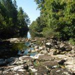 Vue sur la rivière Suran